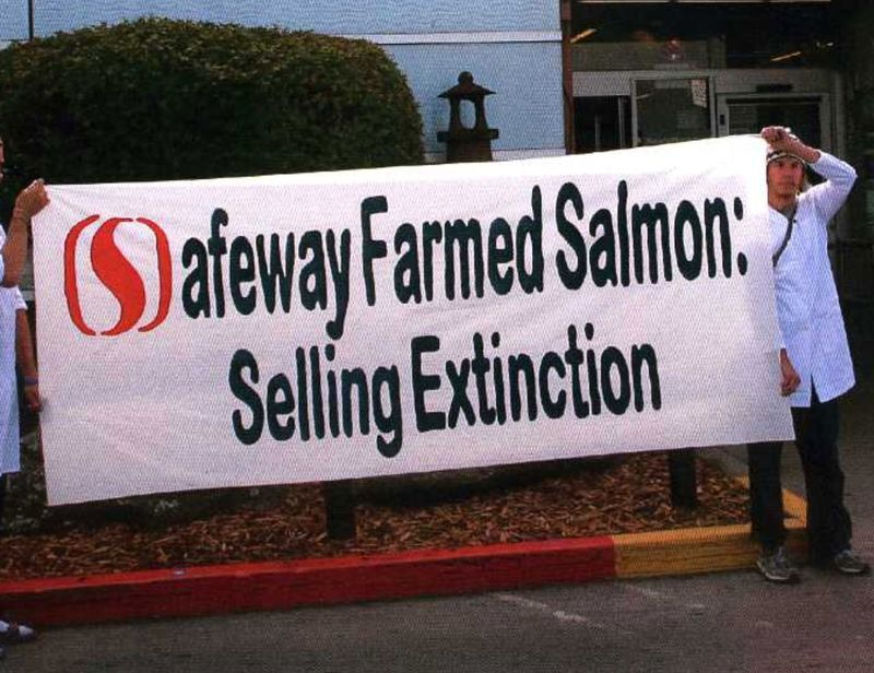 PIC cropped Safeway Selling Extinction