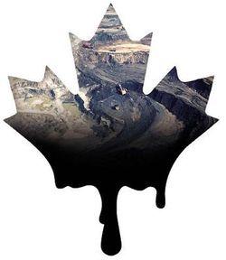 Tarnished Canadian Maple Leaf