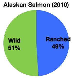 Alaskan Salmon 2010
