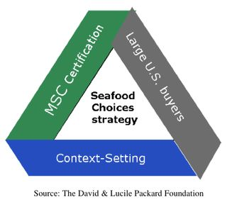 Seafood Choices Diagram